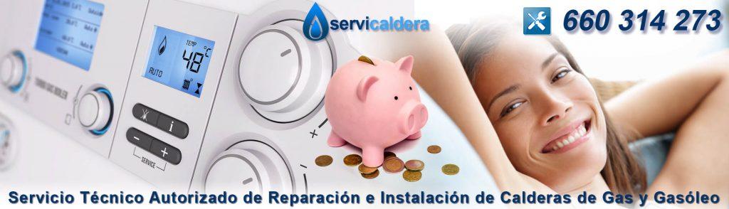 Servicio Técnico Calderas Chapinería 660 314 273